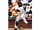 Pablo Sandoval Autographed / Signed About to Hit 8x10 Photo