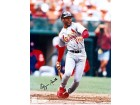 Ozzie Smith Autographed / Signed 8x10 Photo