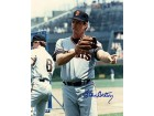 Steve Carlton Autographed / Signed 8x10 Photo