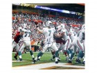 Chad Henne Autographed / Signed Passing 16x20 Photo - Miami Dolphins