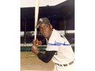 Minnie Minoso Autographed / Signed Baseball 8x10 Photo
