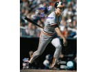Cal Ripken, Jr. signed Baltimore Orioles 16X20 Photo (1983 World Series) 1983 World Series Champs- MLB Hologram