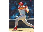 Jose Canseco Autographed / Signed 8x10 Photo