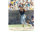 Mark McGwire Autographed / Signed 8x10 Photo