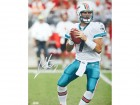 Chad Henne Autographed / Signed 16x20 Miami Dolphins Photo
