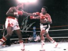 Larry Holmes signed Boxing 16x20 Photo vs Ali w/ Easton Assassin (under the lights)