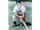 Duke Snider signed Brooklyn Dodgers 16x20 Photo (color on knee-deceased)