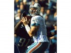 Chad Henne Autographed / Signed Miami Dophins 8x10 Photo