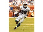 Brian Hartline Autographed / Signed Miami Dolphins 8x10 Photo