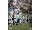 Carnell Williams signed Tampa Bay Buccaneers 16x20 Photo- Williams Hologram