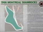 NHL 1900 Montreal Shamrocks Official Patch On Team History Card