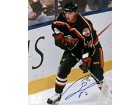 Marian Gaborik Autographed / Signed 8x10 Photo - Minnesota Wild