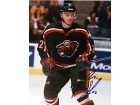 Marian Gaborik Minnesota Wild Autographed / Signed 8x10 Photo