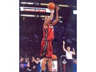 Daequan Cook Autographed / Signed 8x10 Miami Heat Photo