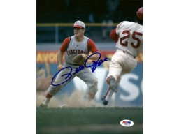 Pete Rose Autographed 8x10 Photo Cincinnati Reds PSA/DNA Stock #64933