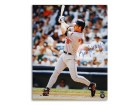 Autographed Brady Anderson Baltimore Orioles 16x20 Photo