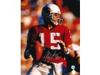 Autographed Neil Lomax St. Louis Cardinals (Football) 8x10 Photo