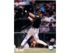 Arizona Diamondbacks Autographed Photos