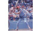 Bill Melton Signed - Autographed Chicago White Sox 8x10 inch Photo - Guaranteed to pass PSA or JSA