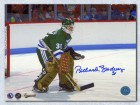 Richard Brodeur Hartford Whalers Signed 8X10 Photo Goalie Photo