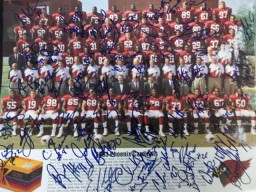 Phoenix Cardinals (1993) Signed 11x14 promo by the 1993 Phoenix Cardinals team. (Right side of promo has scuff marks and a scratch through the middle of the promo)