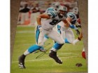 Carolina Panthers Autographed Photos