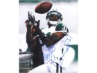 Antonio Cromartie (New York Jets) Signed 8x10 Photo