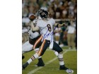 Rex Grossman (Chicago Bears) Signed 8x10 Photo (Steiner Authenticated)
