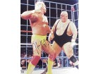 HULK HOGAN SIGNED 16X20 PHOTO - VS KING KONG BUNDY