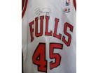 Michael Jordan (Chicago Bulls) Signed Authentic Champion Jersey (Size 36)