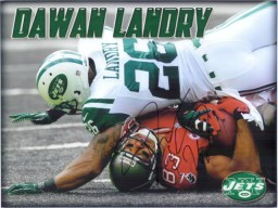 Dawn Landry (New York Jets) Signed 8x10 Photo