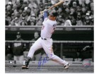 Joe Mauer (Minnesota Twins) Signed 8x10 Photo