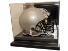 Seattle Seahawks Helmet Case Liberty Line