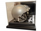 Washington Redskins Helmet Case Liberty Line