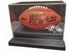 Baltimore Ravens Football Case Liberty Line