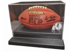 Washington Redskins Football Case Liberty Line