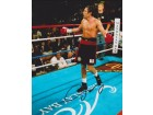 Oscar De La Hoya Signed - Autographed Boxing 8x10 inch Photo - Guaranteed to pass PSA or JSA