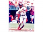 Ozzie Smith Signed - Autographed St. Louis Cardinals 8x10 inch Photo - PSA/DNA Certificate of Authenticity (COA) - 1982 World Series Champs - 2002 Hall of Fame
