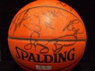 Indiana Pacers (2001-2002) Signed Spalding Performance Indoor/Outdoor Basketball (Larry Bird's Last Coaching Year)