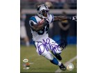 DeAngelo Williams Carolina Panthers 8x10 Photo