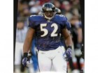 Ray Lewis Autographed Photo