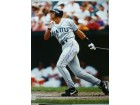Alex Rodriguez (Seattle Mariners) Signed 16x20 Photo