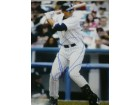 Alex Rodriguez (New York Yankees) Signed 16x20 Photo