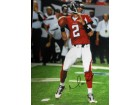Matt Ryan (Atlanta Falcons)