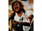 Steven Tyler Signed - Autographed Concert 11x14 Aerosmith Photo - Guaranteed to pass PSA or JSA