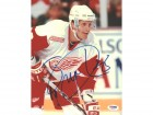 Steve Duchesne Autographed 8x10 Photo Red Wings PSA/DNA #U96253