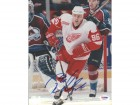 Tomas Holmstrom Autographed 8x10 Photo Red Wings PSA/DNA #U96417