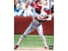 Vince Coleman Signed - Autographed St. Louis Cardinals 8x10 inch Photo - Guaranteed to pass PSA or JSA