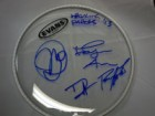 The Walking Papers Signed Evans 10 Drumhead by Duff McKagan, Jeff Angell, Barrett Martin, & Benjamin Anderson