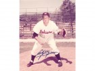 Early Wynn Signed - Autographed Cleveland Indians 8x10 inch Photo - Guaranteed to pass PSA or JSA